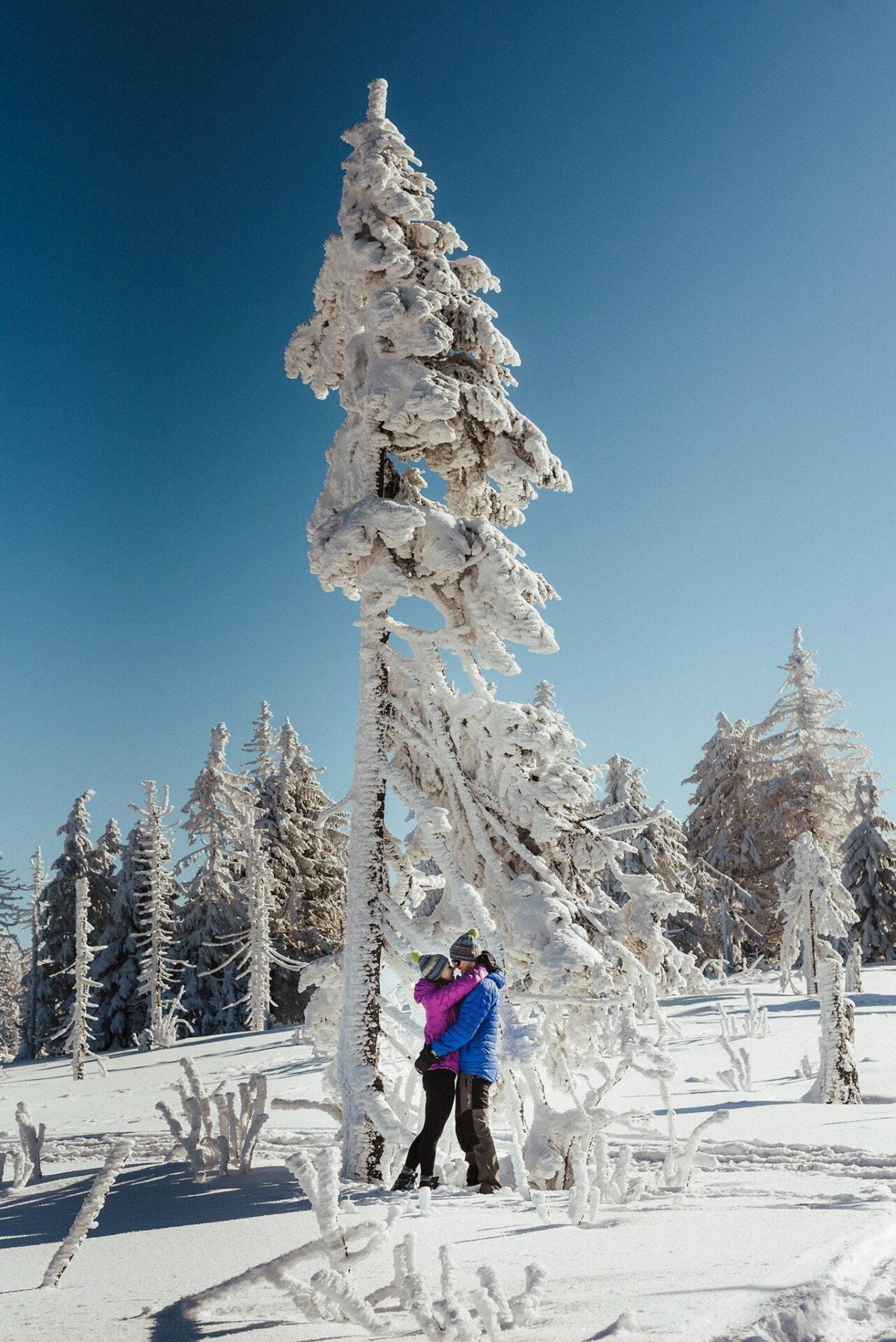 Zimowa sesja narzeczeńska w górach 12