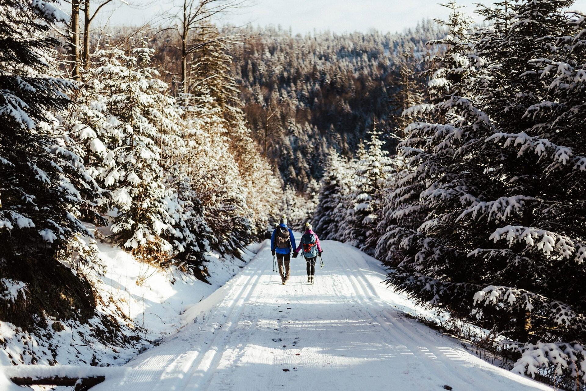 Zimowa sesja narzeczeńska w górach 39